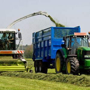 Grass & Equipment